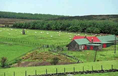 high-park-farm-580x374
